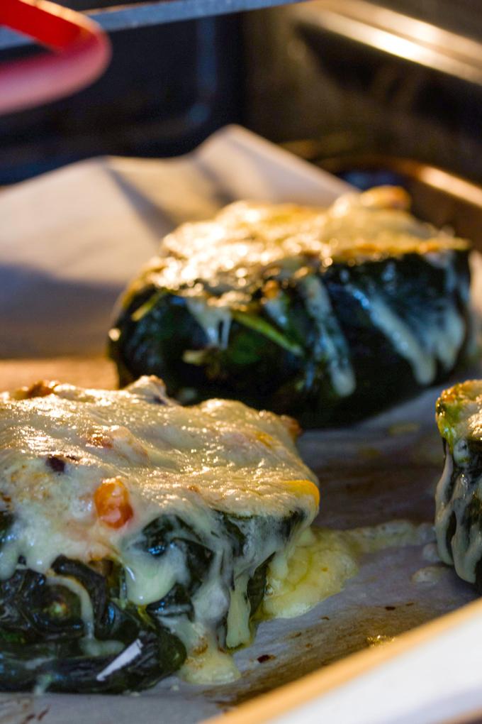 Turkey & Quinoa Stuffed Plobano Peppers