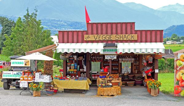 The-Veggie-Shak